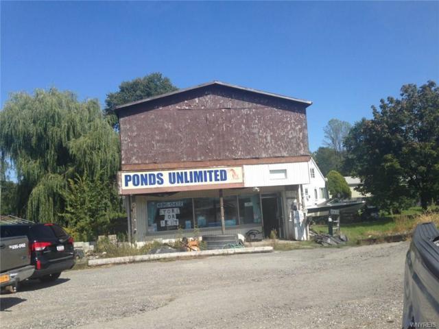 3967 E Niag Falls Boulevard E, Wheatfield, NY 14120 (MLS #B1075609) :: HusVar Properties