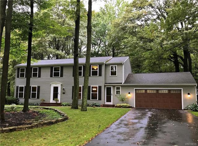 56 Briar Hill Road, Orchard Park, NY 14127 (MLS #B1075835) :: HusVar Properties