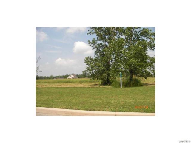 10223 Shamus Lane S, Clarence, NY 14031 (MLS #B1077622) :: HusVar Properties