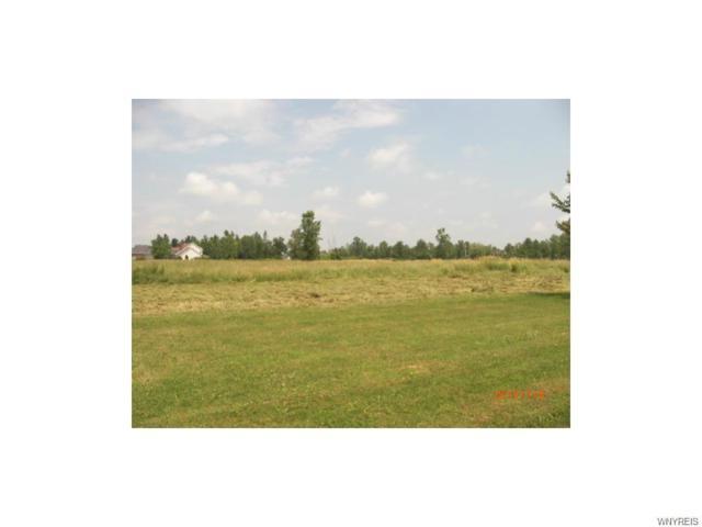 10200 Shamus Lane N, Clarence, NY 14031 (MLS #B1077630) :: HusVar Properties