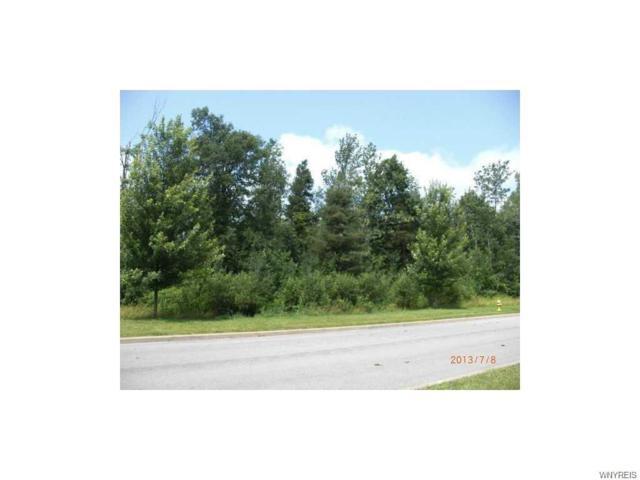 10125 Shamus Lane, Clarence, NY 14031 (MLS #B1077632) :: HusVar Properties