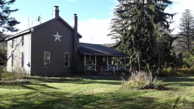 2395 Wolf Creek Road, Clarksville, NY 14727 (MLS #B1082335) :: The Rich McCarron Team