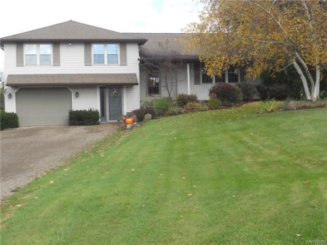 11660 Route 39, Perrysburg, NY 14129 (MLS #B1083730) :: The Chip Hodgkins Team