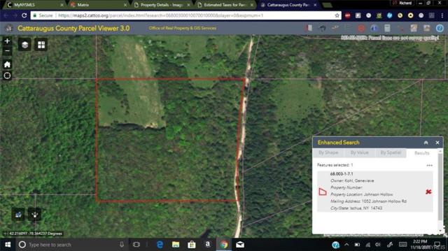 0 Johnson Hollow Road, Ischua, NY 14743 (MLS #B1087788) :: BridgeView Real Estate Services