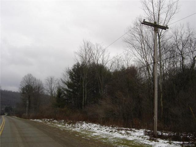 NO # Five Mile Road, Ischua, NY 14743 (MLS #B1088507) :: The CJ Lore Team | RE/MAX Hometown Choice