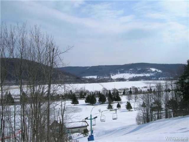 E102 Snowpine Village, Great Valley, NY 14741 (MLS #B1091612) :: The Rich McCarron Team