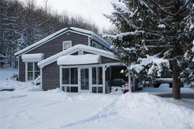 7349 Watson Road, Mansfield, NY 14731 (MLS #B1098113) :: Updegraff Group