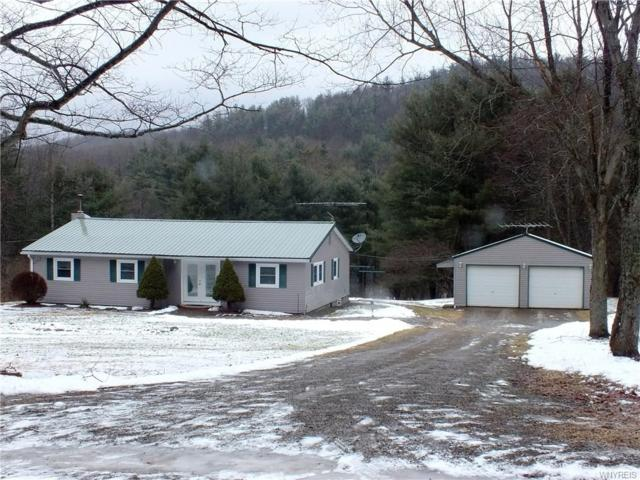 8660 Coon Hollow Road, Portville, NY 14770 (MLS #B1098926) :: The Rich McCarron Team