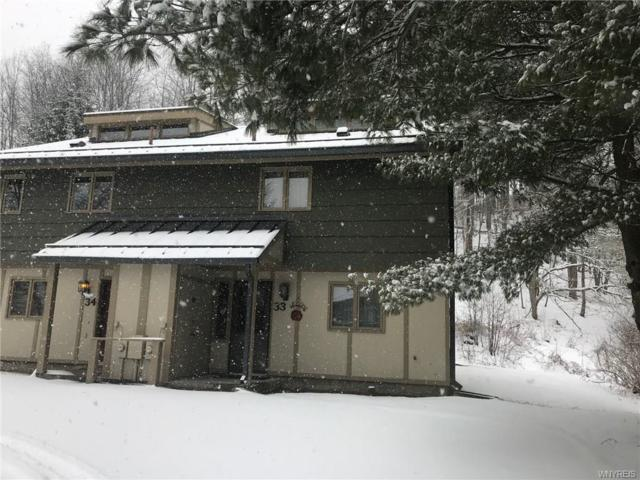 33 Alpine, Ellicottville, NY 14731 (MLS #B1100478) :: The Rich McCarron Team
