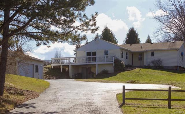 3856 Lower Mountain Rd, Cambria, NY 14094 (MLS #B1101157) :: The Chip Hodgkins Team