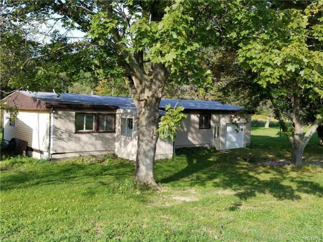 5353 Mungers Mill Road, Warsaw, NY 14550 (MLS #B1102555) :: The Rich McCarron Team