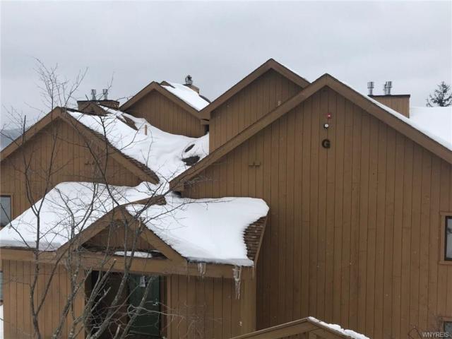 G101 Snowpine Village 5915, Great Valley, NY 14741 (MLS #B1102654) :: The Rich McCarron Team