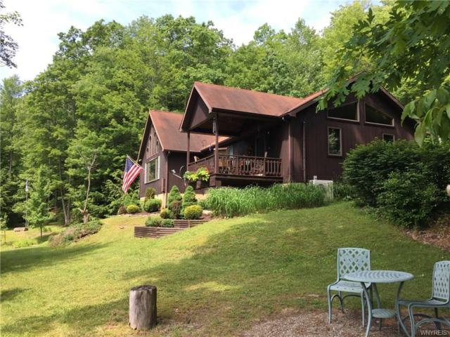 3351 Boza Road, Great Valley, NY 14748 (MLS #B1115842) :: Updegraff Group