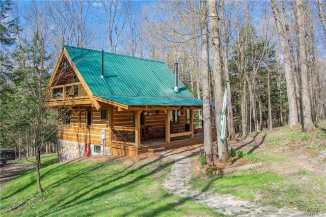 4991 Perreault Road, Great Valley, NY 14741 (MLS #B1117265) :: Updegraff Group