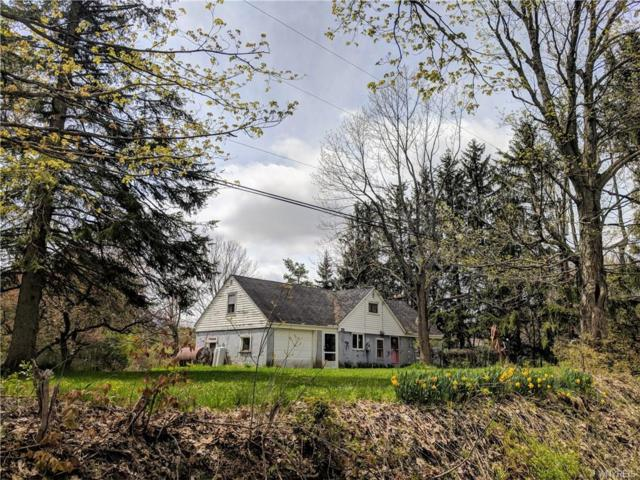 10427 Partridge Road, Colden, NY 14080 (MLS #B1117512) :: Updegraff Group