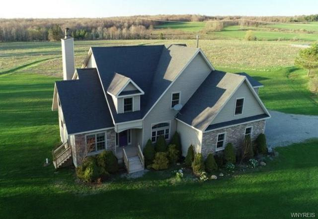 10980 Allen Road, Sardinia, NY 14055 (MLS #B1117834) :: The CJ Lore Team | RE/MAX Hometown Choice