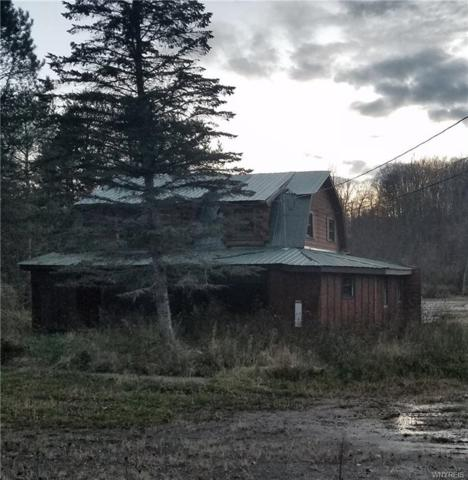 8680 State Road, Colden, NY 14033 (MLS #B1118320) :: Updegraff Group