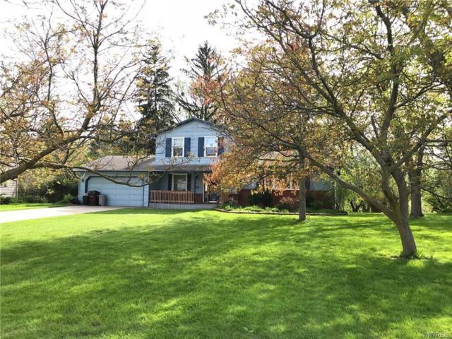 69 Eaglebrook Drive, Orchard Park, NY 14224 (MLS #B1118936) :: Updegraff Group