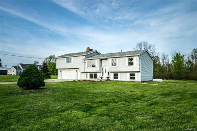 9021 Newcomb Road, Evans, NY 14006 (MLS #B1119588) :: BridgeView Real Estate Services