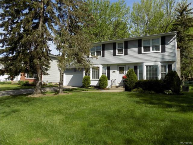 437 Cottonwood Drive, Amherst, NY 14221 (MLS #B1120519) :: Updegraff Group