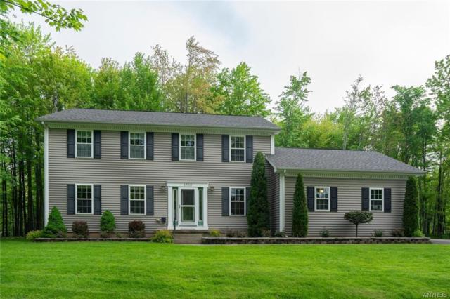 8780 County Road, Clarence, NY 14051 (MLS #B1120664) :: Updegraff Group