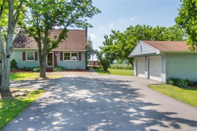 11240 Big Tree Road, Wales, NY 14052 (MLS #B1121565) :: The Chip Hodgkins Team