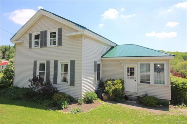 2764 Route 39 Road, Eagle, NY 14024 (MLS #B1121964) :: The Rich McCarron Team