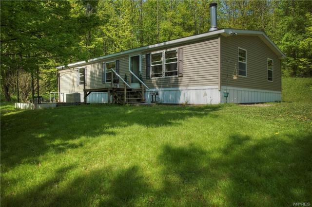 9118 Potter Hill Road, New Albion, NY 14719 (MLS #B1122751) :: The Rich McCarron Team
