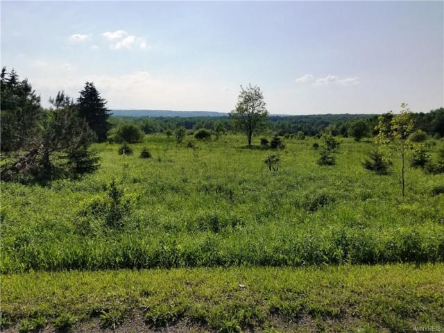 VL Pratham Road, Sardinia, NY 14069 (MLS #B1122882) :: The CJ Lore Team | RE/MAX Hometown Choice
