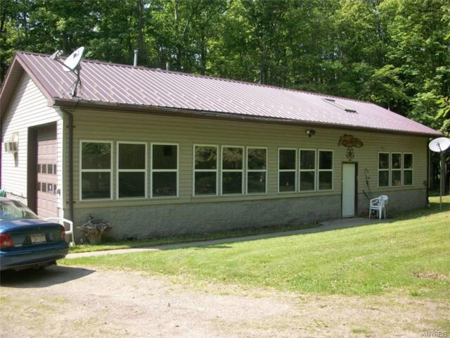 8877 Oramel Hill Road, Caneadea, NY 14717 (MLS #B1124663) :: The Rich McCarron Team