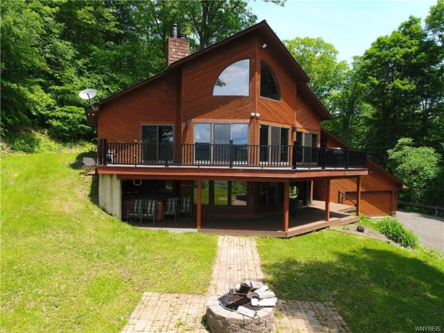 6221 Whitmer Road, Ellicottville, NY 14731 (MLS #B1125247) :: Robert PiazzaPalotto Sold Team