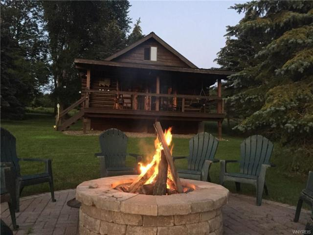 7120 Poverty Hill Road, Ellicottville, NY 14731 (MLS #B1125360) :: Robert PiazzaPalotto Sold Team