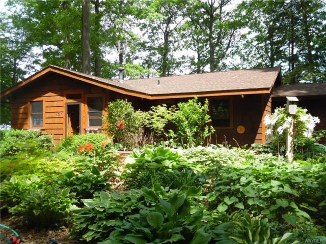 5357 W Lake Road W, Newfane, NY 14028 (MLS #B1125377) :: Robert PiazzaPalotto Sold Team