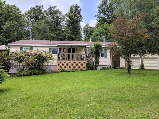 8153 S Canada Hill Road, Ellicottville, NY 14731 (MLS #B1126145) :: Robert PiazzaPalotto Sold Team