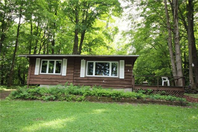 10569 Warner Gulf Road, Sardinia, NY 14030 (MLS #B1127223) :: The CJ Lore Team | RE/MAX Hometown Choice