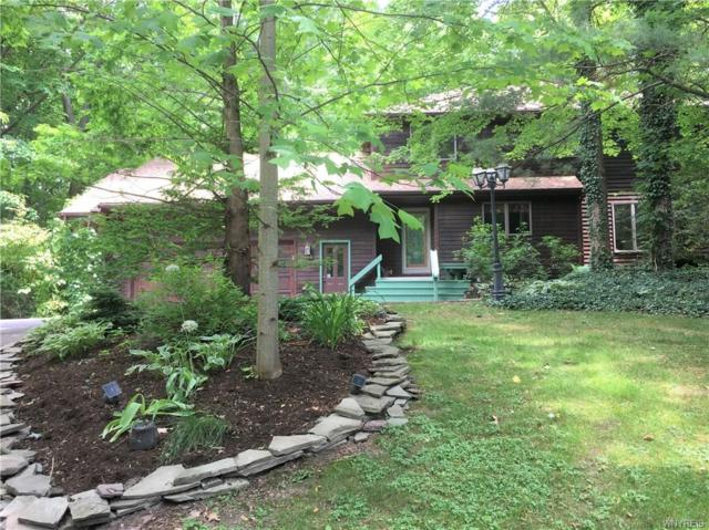 140 Middlebury Road, Orchard Park, NY 14127 (MLS #B1127389) :: Robert PiazzaPalotto Sold Team