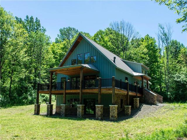 8516 Bailey Hill Rd, East Otto, NY 14729 (MLS #B1127519) :: The Rich McCarron Team