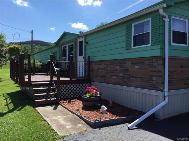 9677 Deer Creek Road, Genesee, NY 14770 (MLS #B1128557) :: The Chip Hodgkins Team