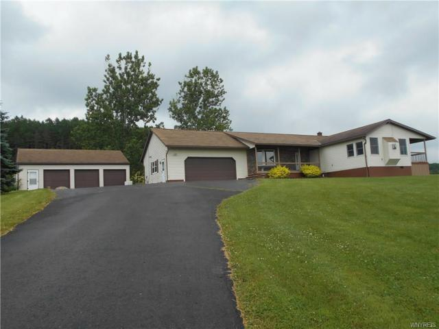 2328 Lyndon Road, Franklinville, NY 14737 (MLS #B1129335) :: The Rich McCarron Team