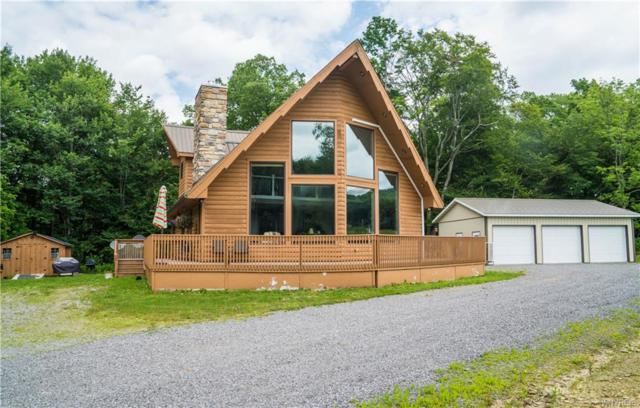 7180 Toad Hollow Road, Mansfield, NY 14755 (MLS #B1132541) :: Robert PiazzaPalotto Sold Team