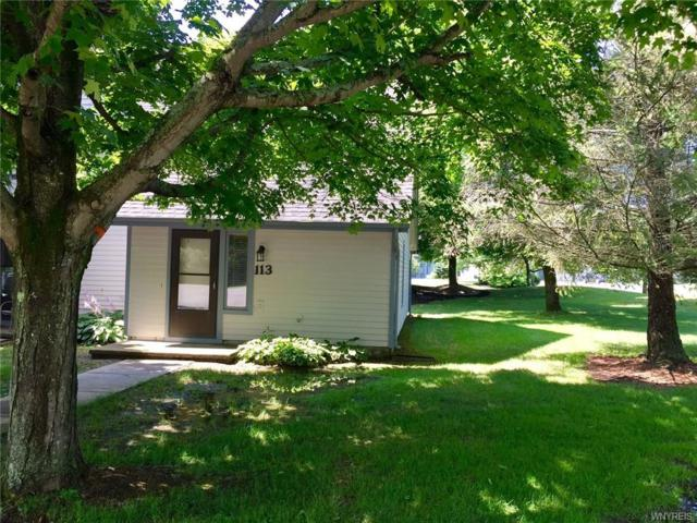 113 Wildflower, Ellicottville, NY 14731 (MLS #B1132617) :: The Chip Hodgkins Team