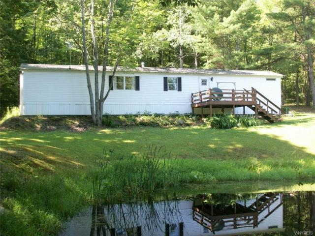 7667#40 Russell Hill Road, Caneadea, NY 14717 (MLS #B1133165) :: The Rich McCarron Team