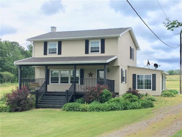 10130 Schuknecht Road, Hume, NY 14735 (MLS #B1135069) :: The Rich McCarron Team