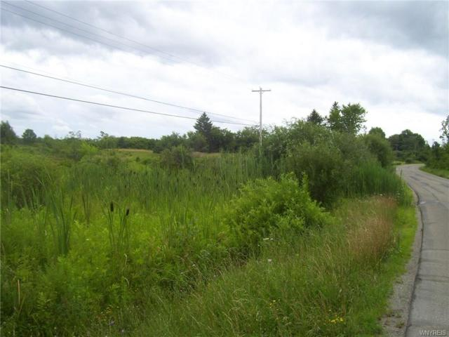 6+ acres Moore Road, Concord, NY 14141 (MLS #B1136027) :: The Rich McCarron Team
