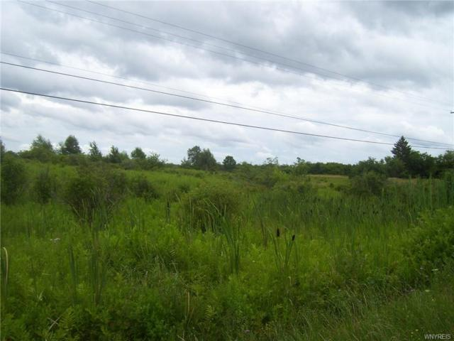 7 Acres Moore Road, Concord, NY 14141 (MLS #B1136033) :: The Chip Hodgkins Team