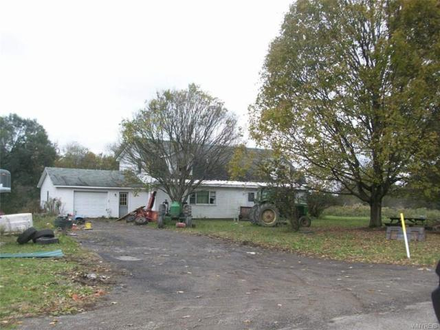 10463 Hammond Hill Road, East Otto, NY 14729 (MLS #B1136201) :: The Rich McCarron Team