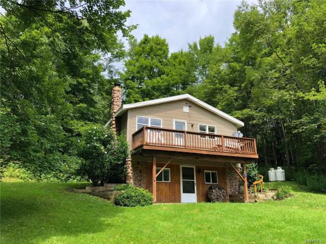 5464 Route 242 E, Ellicottville, NY 14731 (MLS #B1139811) :: The Chip Hodgkins Team