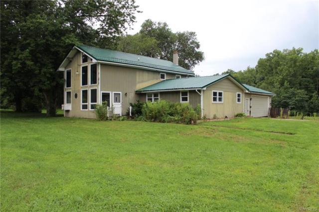 7550 Higgins Creek Road, Hume, NY 14745 (MLS #B1140269) :: The Chip Hodgkins Team