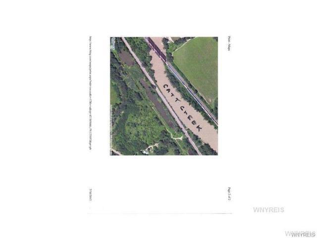 VL Mott Road, Hanover, NY 14081 (MLS #B1140505) :: The Rich McCarron Team