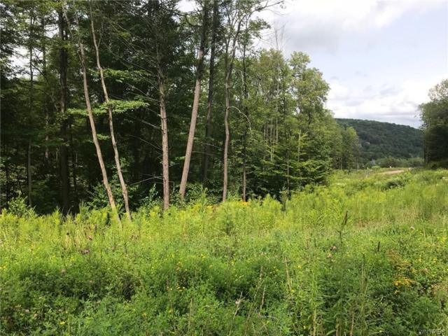 1 Westmont, Mansfield, NY 14731 (MLS #B1142546) :: The CJ Lore Team | RE/MAX Hometown Choice